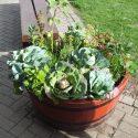 Ulverston Open Gardens Weekend
