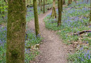 Ulverston Walks