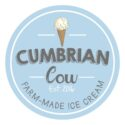 Cumbrian Cow