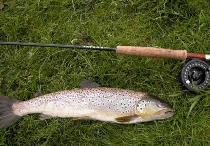 Ulverston Angling Association