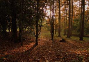 Ulverston in Autumn – Photo Competition Winner