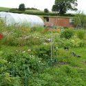 Practical Biodynamic Gardening Course