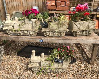 Ellie's Hill Foot Garden Centre